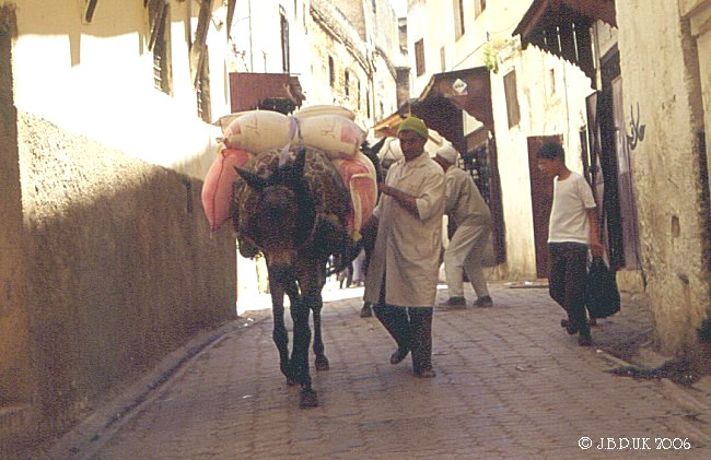morocco_mule_power2_0096_0032