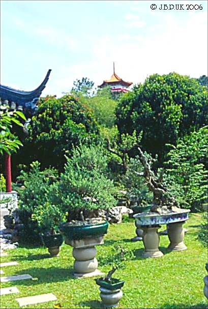 singapore_chinese_garden_bonsai_1999_0189