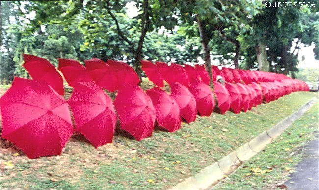 singapore_chinese_garden_umbrellas_1999_0189
